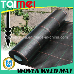 Ground Cover Weed Mat, Erosion Control Mat, PP Nonwoven Weed Mat pictures & photos