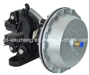50nm Dbg-204 for Machine Pneumatic Air Disc Brake pictures & photos