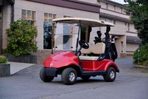 Golf Cart pictures & photos