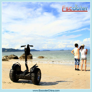 2015 New Style Made in China Electric Chariot X2 for Sale pictures & photos