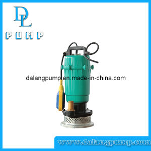 Clean Water Submersible Pump for Farmer, Domestic Pump pictures & photos