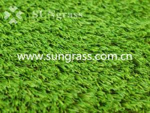 40mm Recreation/Landscape Synthetic Turf (SUNQ-AL00060-1) pictures & photos