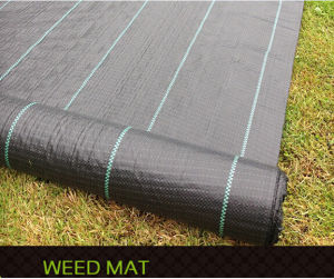 100% PP Woven Ground Cover/Weed Mat/Horticulture Textiles pictures & photos