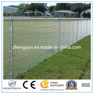 Hot Dipped Galvanized Steel Wire/Chain Link Fence pictures & photos