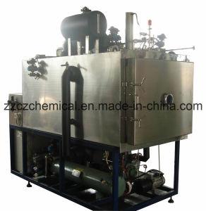 Pilot Freeze Dryer (LGJ-200F top press type) pictures & photos