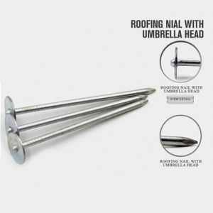 New Design Price Roofing Nails with Good Quality pictures & photos