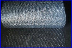 Electro Galvanized Hexagonal Wire Netting pictures & photos