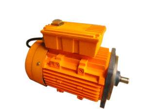 (CE, CCC, ISO9001) Electric Motor