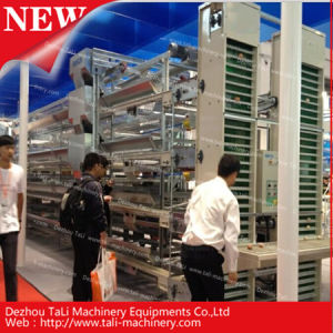 Hot Sales for Machine Collecting Automatic Egg