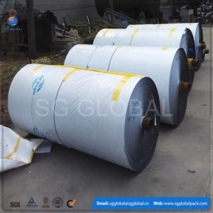 Heavy Duty Polyethylene Coated Tarpaulin in Roll Form pictures & photos