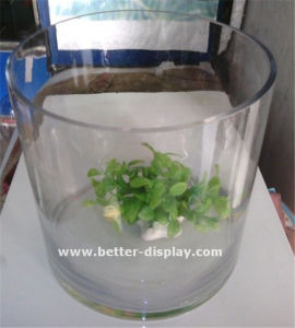 Wholesale Clear Perspex Tube Acrylic Tube for Flower pictures & photos