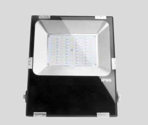 50W RGB+CCT LED Floodlight pictures & photos