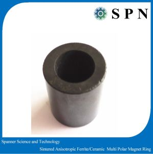 Permanent Ferrite Multipole Motor Rings Customized pictures & photos