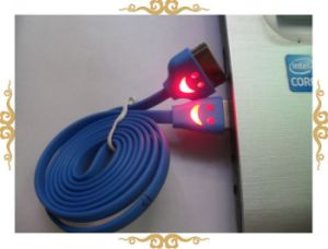 Hot Sale LED Lighting for iPhone 4S/4 USB Data Cable