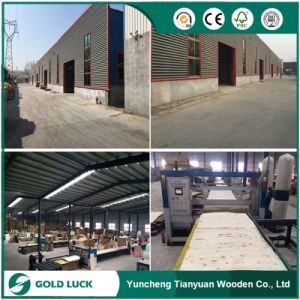Cheap Price Good Quality Formwork Marine Film Faced Shuttering Plywood pictures & photos