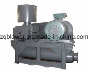 Pneumatic Conveying System Roots Blower- (ZG-300) pictures & photos