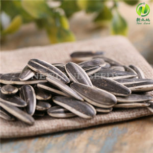 High Quality Sunflower Seeds 601 From Inner Mongolia pictures & photos