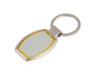 Special Promotion Metal Key Chain with Plastic (F1015A) pictures & photos