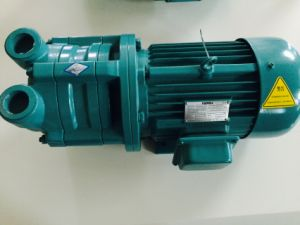Vacuum Pumps with Single-Stage Water-Ring