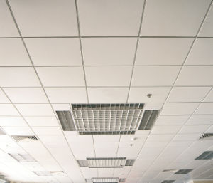 Open Frame Ceiling Series / Lay in Ceiling pictures & photos