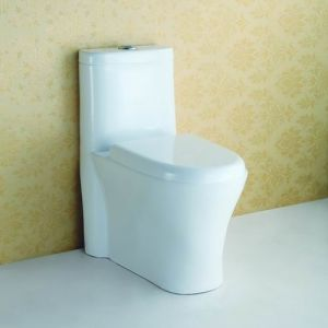 Single Piece Toilet Seat at-585 pictures & photos