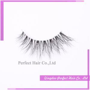 Natural Daily Use Human Hair Lashes False Eyelash pictures & photos