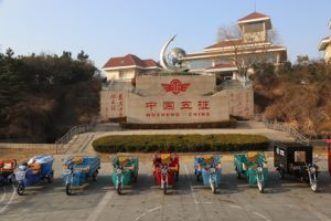 Wuzheng Electric Three Wheel Tricycle pictures & photos