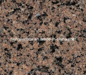 Cut-to-Size Tropic Brown Granite Slab Granite Tile