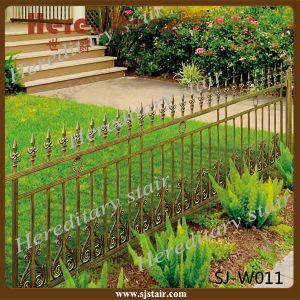 Euro Hot Style Durable 6063 Aluminum Garden Fencing (SJ-W011) pictures & photos