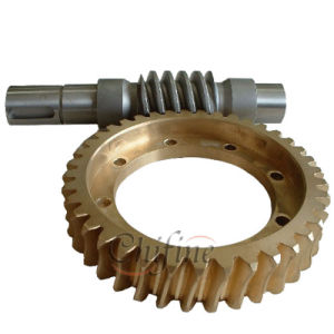 High Quality Worm Gear for Sale pictures & photos