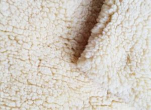 Sherpa Fabric pictures & photos