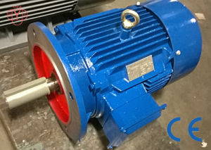 0.12kw - 200kw Tefc AC Motor Ie2 Ie3 pictures & photos