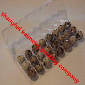 3X8 24units Clear PVC Plastic Egg Hatching Trays