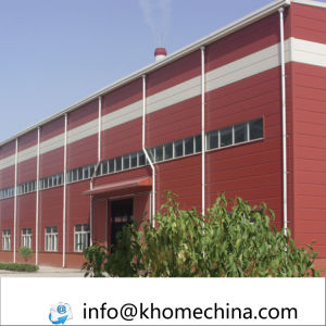 Building Design Steel Skeleton Buildings for Workshop Warehouse pictures & photos