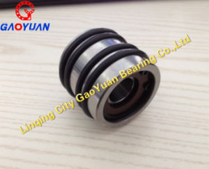 High Quality! Chemical Fiber Bearing Bn25-10tvvp43 pictures & photos