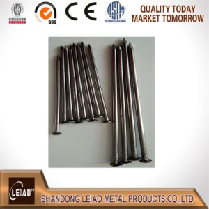 Common Wire Nails Factory pictures & photos