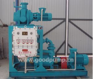 Water Vacuum Pump, Liquid Ring Vacuum Pump, Manual Vacuum Pump pictures & photos