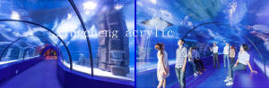 Large Acrylic Aquarium/Huge Aquarium/Large Aquarium Decorations pictures & photos