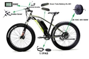 Czjb Jb-104c 350W Electric Bike and E-Bike Brushless Motor Conversion Kit 250W pictures & photos