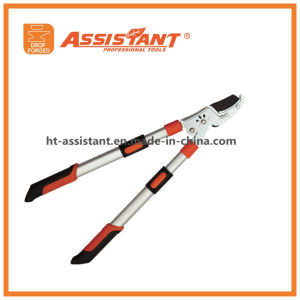 Compound Anvil Pruning Loppers with Telescopic Extendable Aluminum Handles pictures & photos