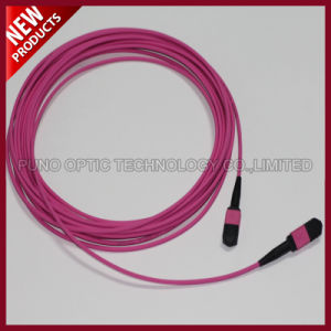 12 Fibes Optical MTP MPO Aqua OM3 Trunk Cable pictures & photos