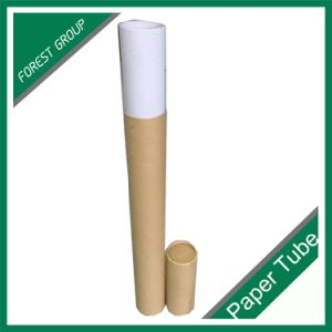Mini Color Paper Tube Packaging for Cosmetics pictures & photos