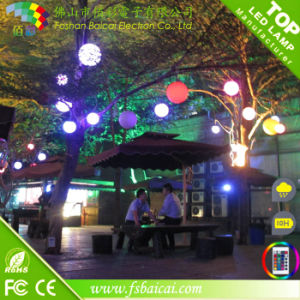Color Changing Outdoor Waterproof Solar Park Night Lights with Ball Shape pictures & photos