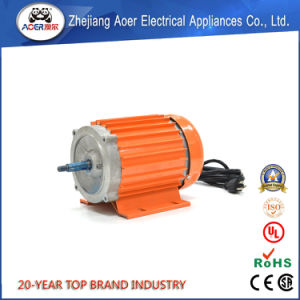 AC Electric Water Pump Motor for Aquarium, NEMA Motor pictures & photos