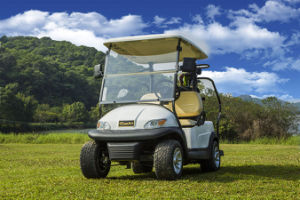 2 Seater Electric Golf Cart pictures & photos