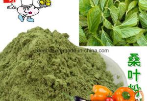 Plant Powder--Mulberry Powder pictures & photos