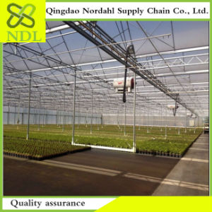 Double Inflatable Plastic Film Greenhouse Made in China pictures & photos