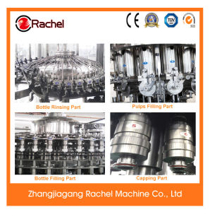 Automatic Fruit Pulp Bottling Machine pictures & photos