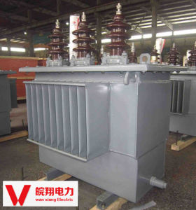 Oil-Immersed Transformer/ out-Door Voltage Transformer pictures & photos