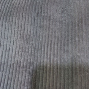 Corduroy Fabric 8 Wales in 100% Cotton